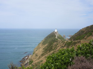 Nuggets point